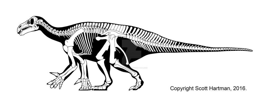 Iguanodon by ScottHartman