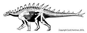 Huayangosaurus - a primitive little stegosaur