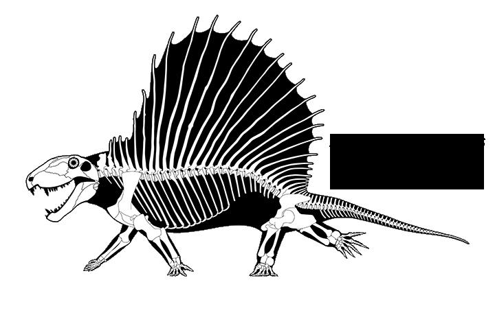 Bringing Dimetrodon into the 21st century by ScottHartman