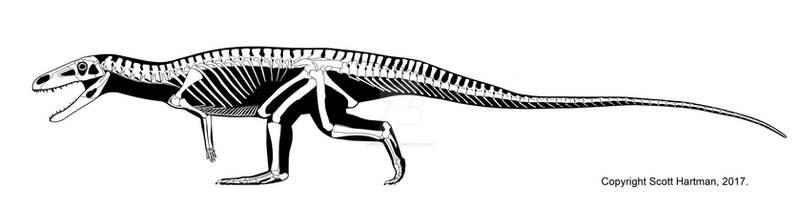 Poposaurus gracilis sauntering along