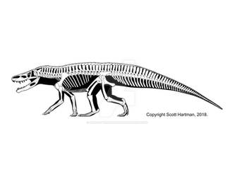 Batrachotomus - the 'typical' Triassic loricatan