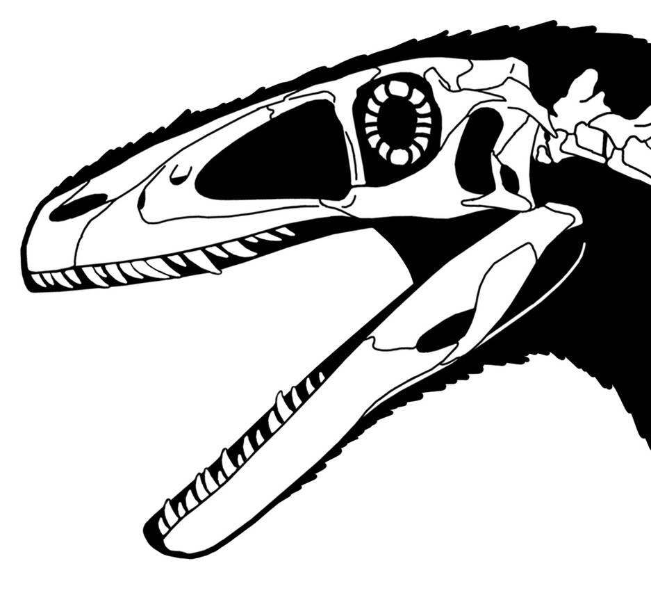 Deinonychus head with lips by ScottHartman