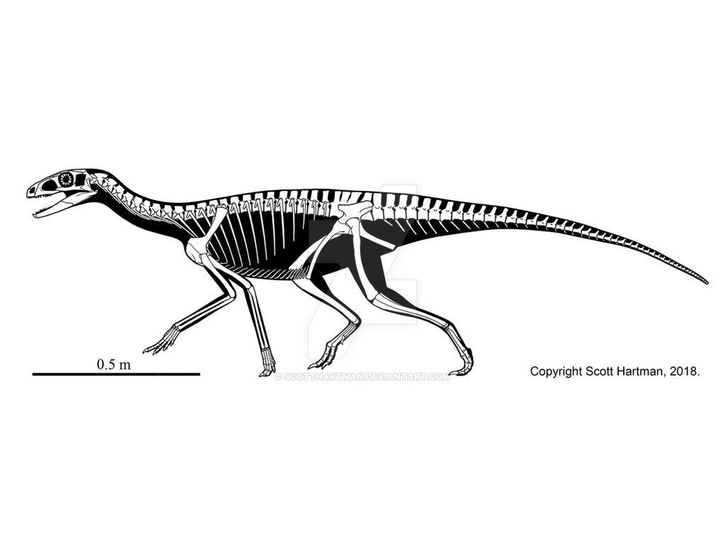 Triassic Proto-Dinosaur by ScottHartman