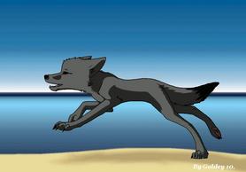 Dog Running Animation-Enhanced by GoldenTigerDragon
