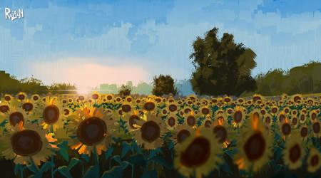 Pleinairpril Sunset field