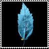 Fringe Glyph: Leaf by lzsays