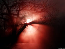 Red Moon by tamaiyoku