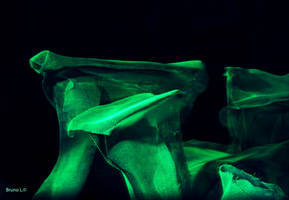 'Glow Mushrooms'