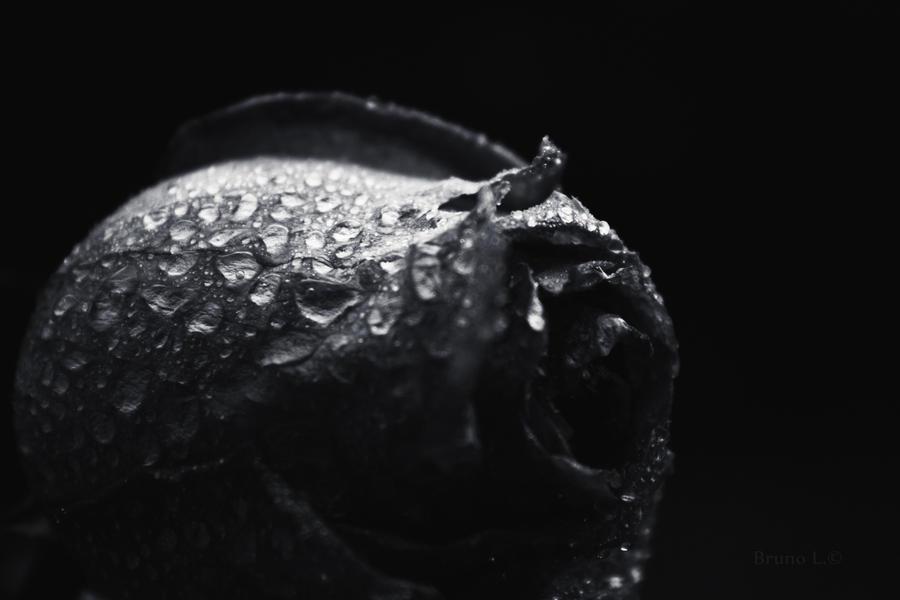 Unclean by darkdex52