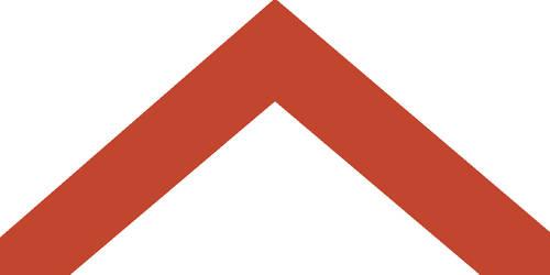 Mars Flag Hansen