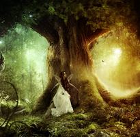Fairy lights by KellieArt