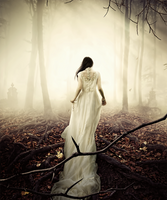 The return by KellieArt