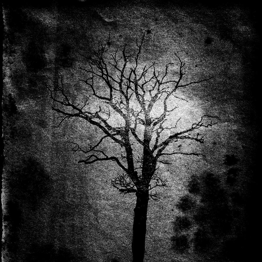 The Tree Of Death by NemorisInferioris