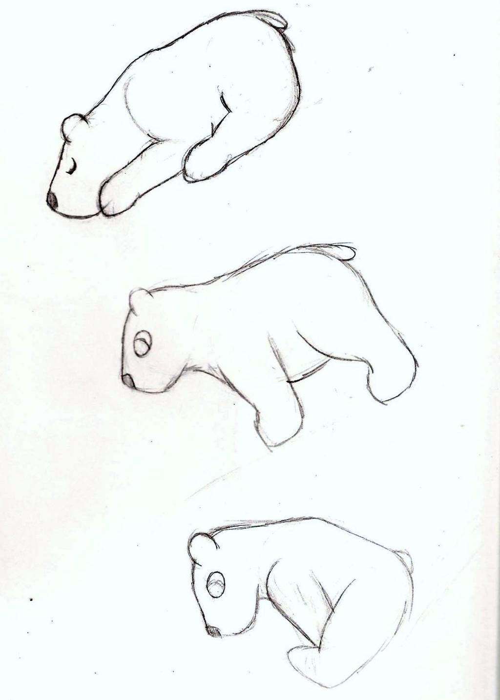 chibi polar bear poses by wh chicka 999 on deviantart