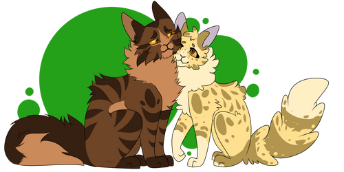 Tigerclaw and Goldenflower by Coconut-Care