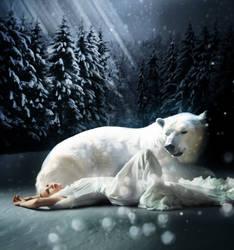 winter bridal by koox