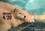 Dogecoin 4/20