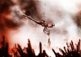 plug fly by TeeAl