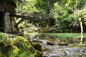 Bridge in Nature by matcheslv