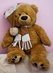 Teddy Bear by Geater