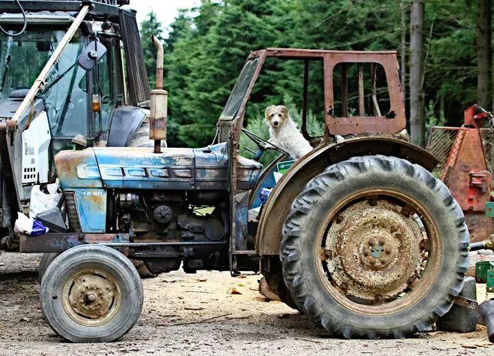 Farmer Barkley by Geater