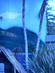 Commission mural Tahitian scenery by damien-christian