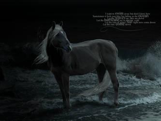 Into the Ocean by fideauxx