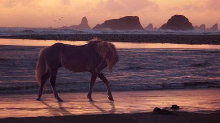 Sunset Beach by fideauxx