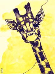 A giraffe by joniina