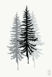 Trees in a mist by joniina