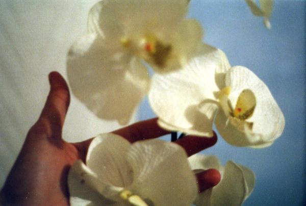 envolee fleurie by sweetiefee