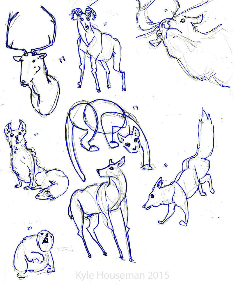 Animal Sketches by ThePossessedPuppet