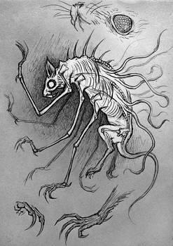 HoC spiderat-catcher sketch