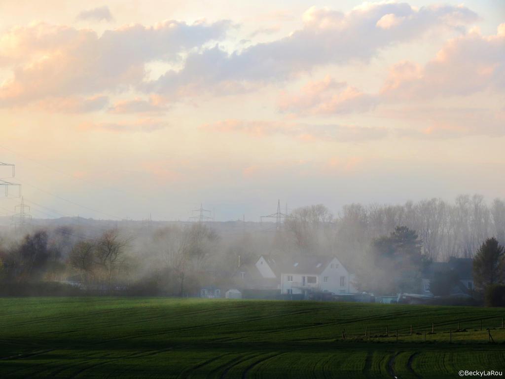 Fog by BeckyLaRou