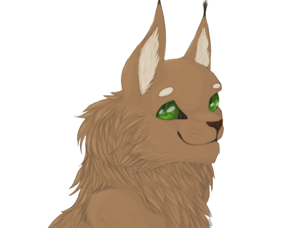 Mainecoon Bust by SeeTheTimeFly