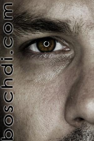 boschdi's Profile Picture
