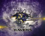 Baltimore Ravens Wallpaper