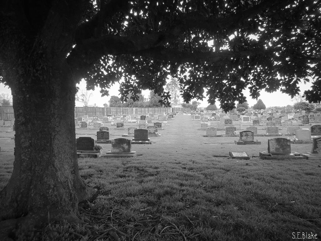 Cemetery by Lionessrules