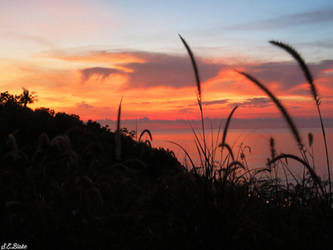 Sunset  by kiwipics