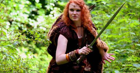 Viking hunt by in93