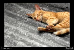Sleep ... by badrus