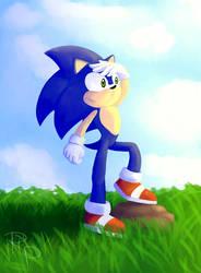 Sonic 11.10. by RuberPhoenix
