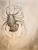 Cheshire Tarantula by CaptainNutmeg