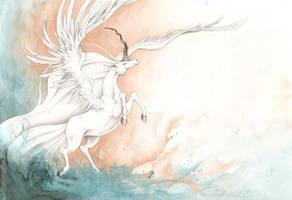 Wings by CaptainNutmeg