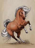 Horse sketch_Epona