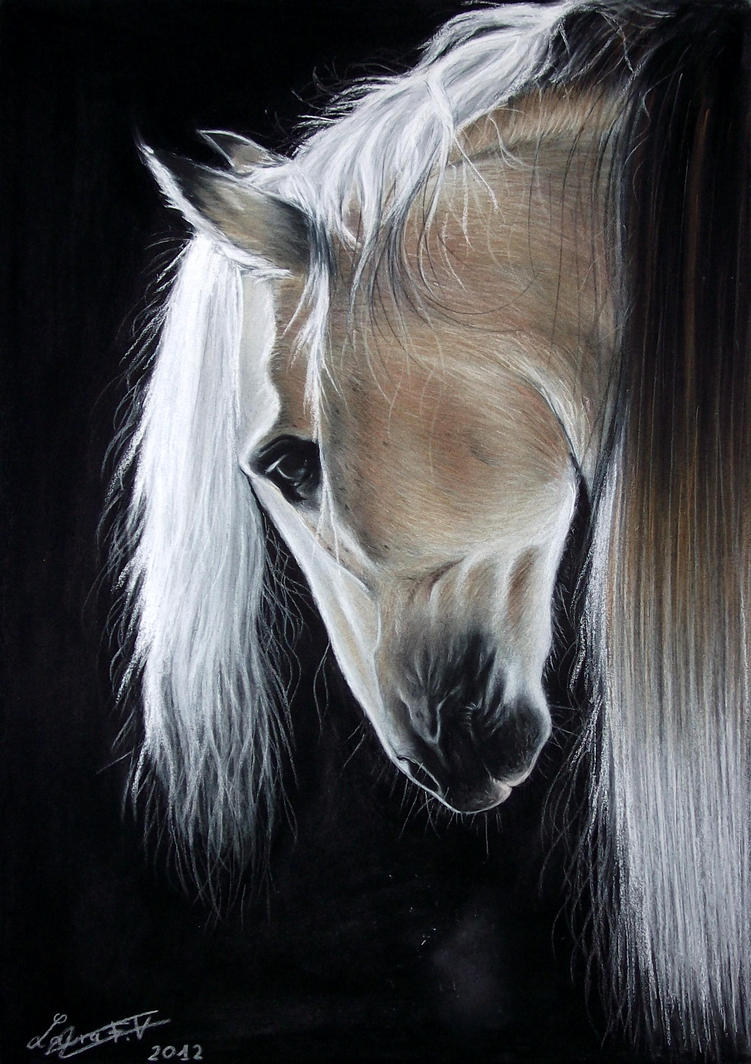 Black And White Abstract Horse Paintings