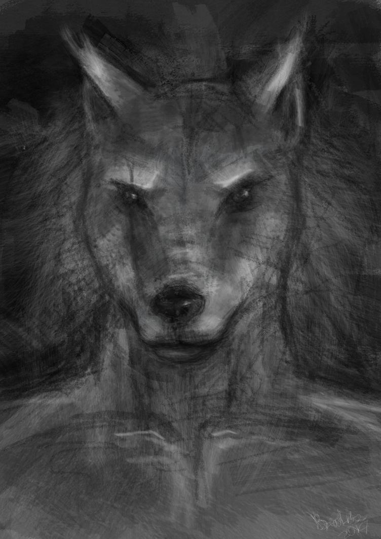 [A] Wolf by Breshkka