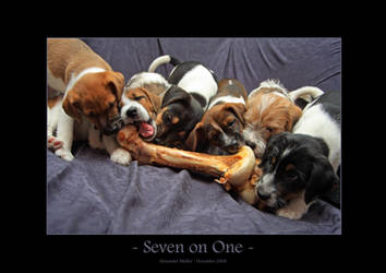 Seven on One
