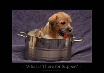 What is There for Supper?