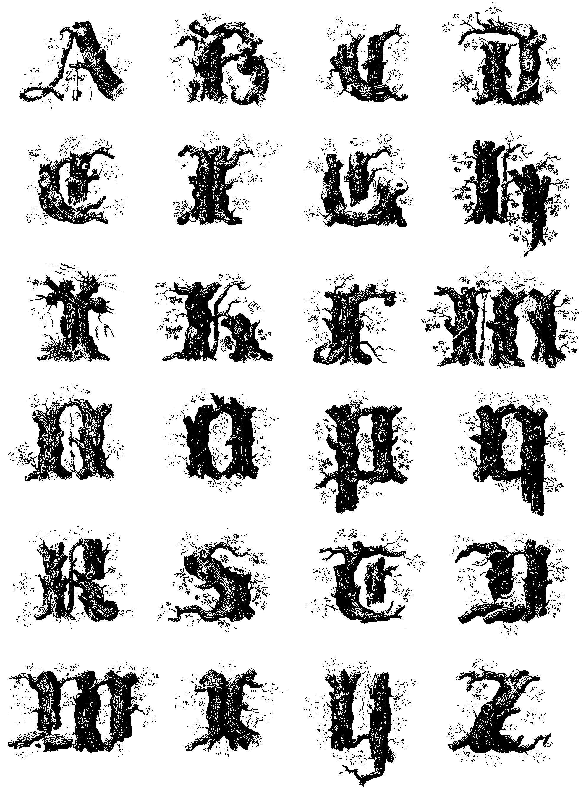 Stump or tree Alphabet by Mindgazer